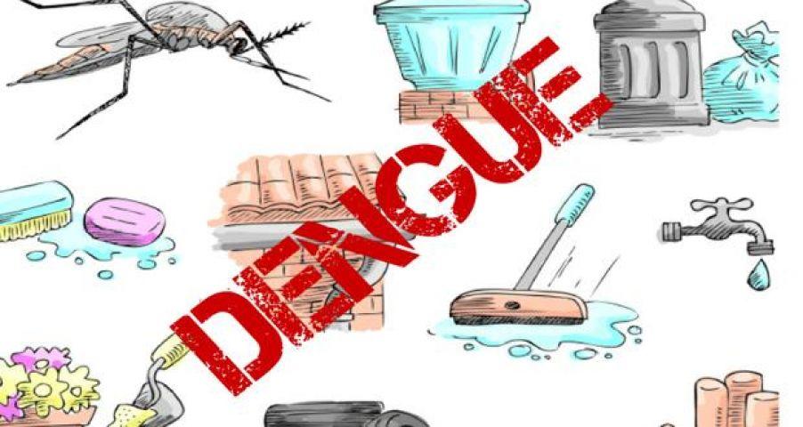 dengue disease, aadharbhumi.com